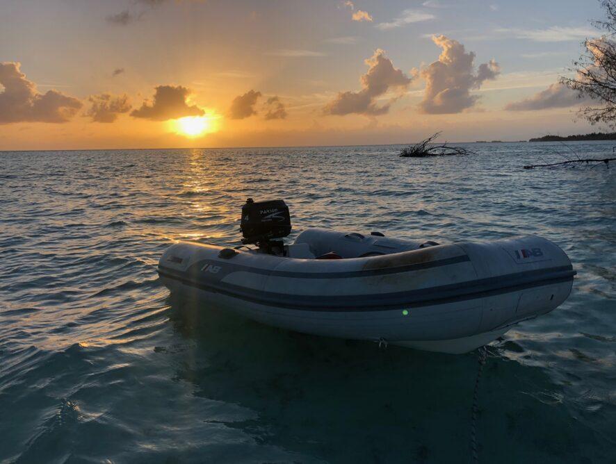Jurnal dintr-o insulă fără pește - sfârșit